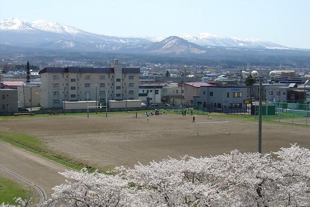 Sakura2017