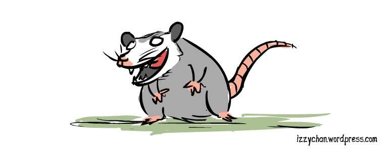 opossum grey
