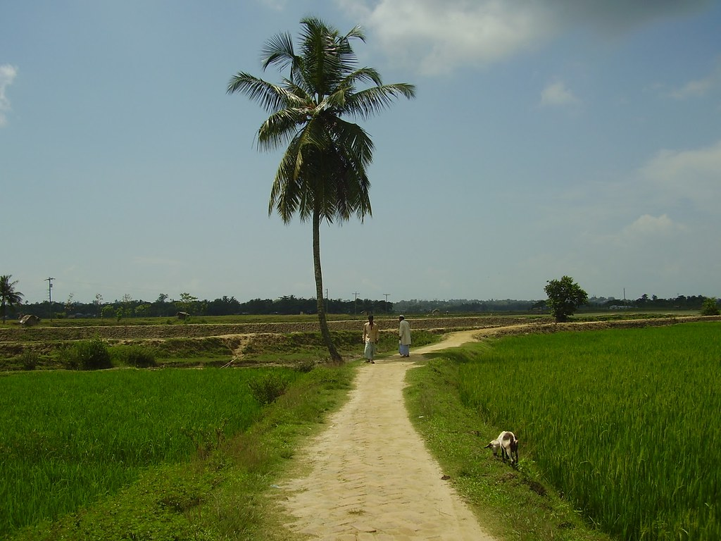 Bangladeshi Scenery | Golf Golfers | Flickr Golfers