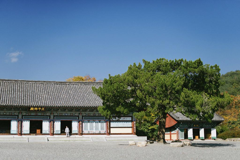 Gyeongju-7975