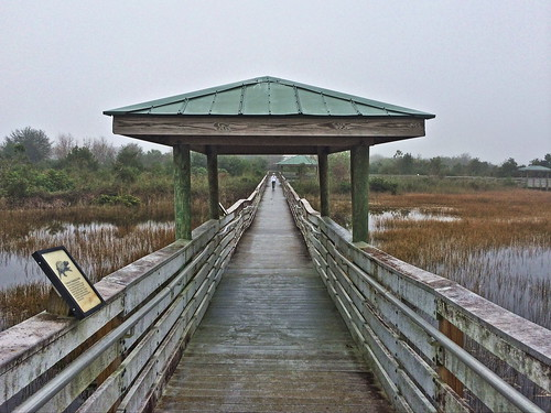 Chapel Trail boardwalk2 20140207