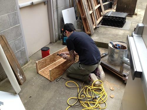 Nicole Building Boxes