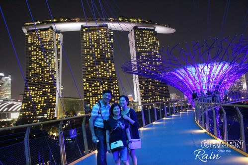 160910f OCBC Skywalk Gardens by the Bay _110