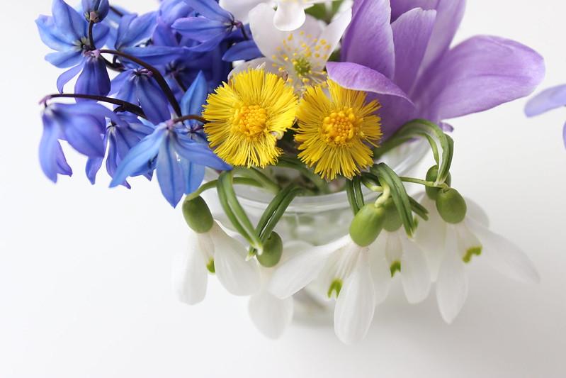 Spring flowers / etdrysskanel.com