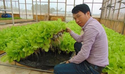 Anh Nguyễn Văn Tuấn bên sản phẩm rau thủy canh. Ảnh: N.T.