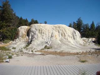 29 Orange spring mound