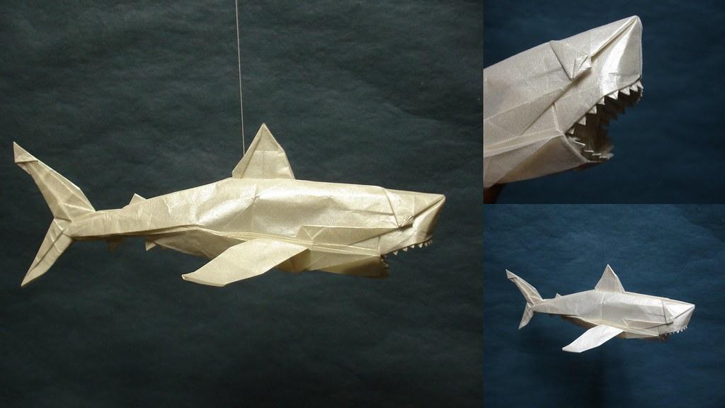 Nguyen Ngoc Vu Great White Shark 270 Steps And It Feels Flickr