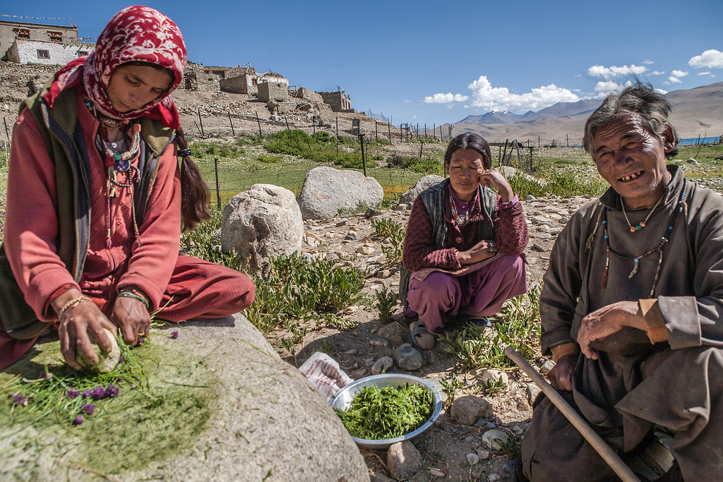 Leh Ladakh Woman Tour