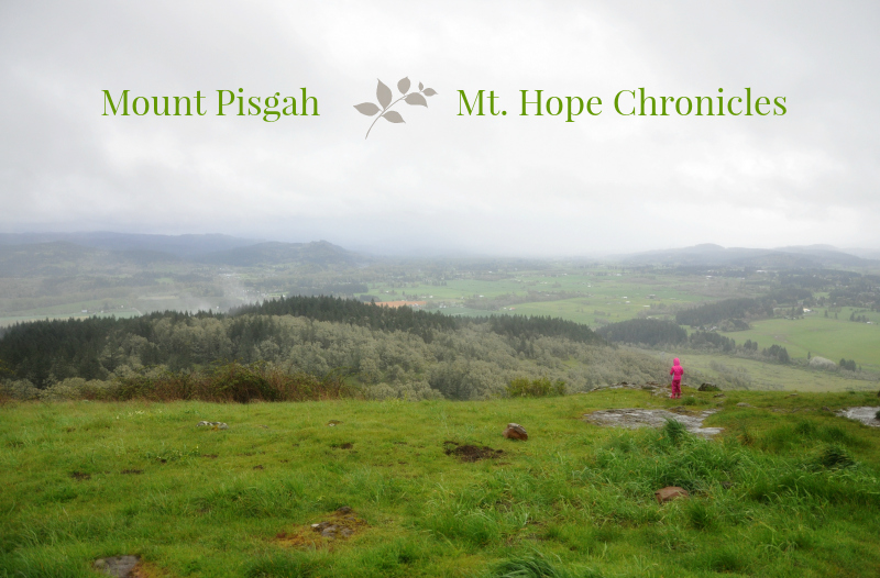 Mount Pisgah @ Mt. Hope Chronicles