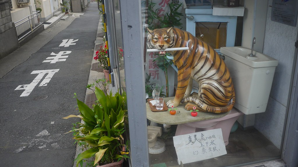 Tiger Toilet Accessoires : Tiger on toilet david flickr