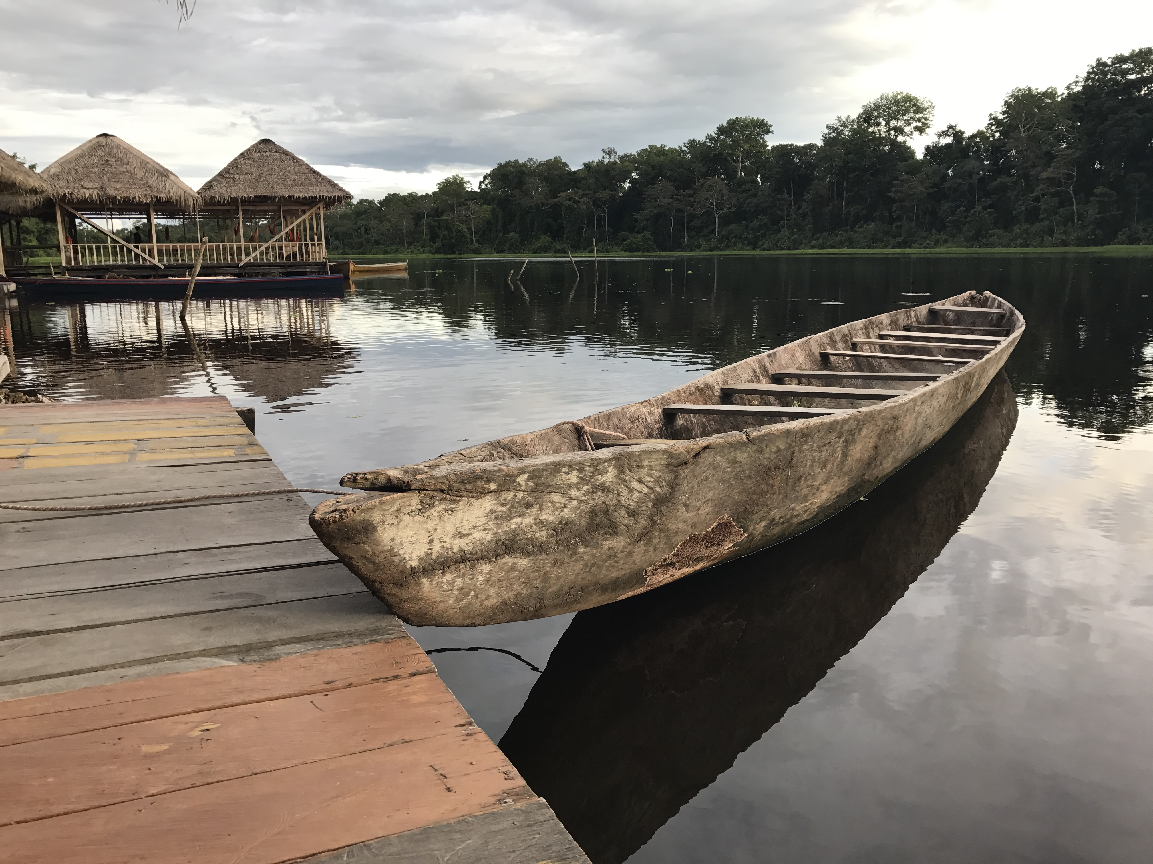 The Colombian Amazon (from iPhone)