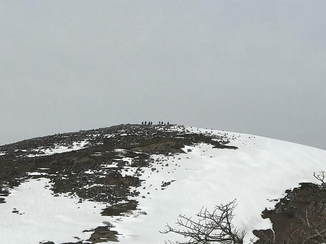 霊仙山 今畑ルート 西南尾根より山頂