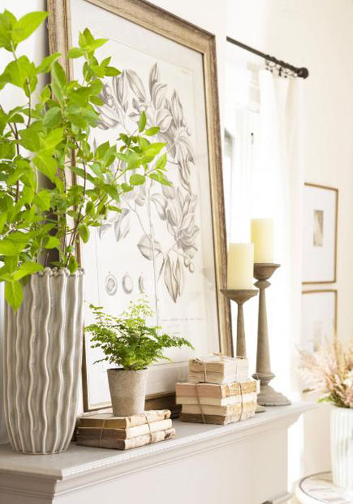 Potted plants and books as mantle decorations