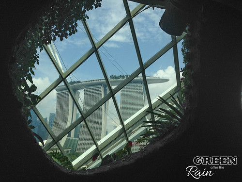 160909d Cloud Dome Gardens by the Bay _034