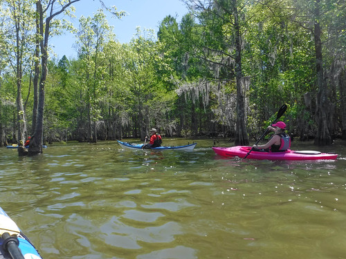Paddle to Church Island with the Tri-County Blueways Paddlers-018