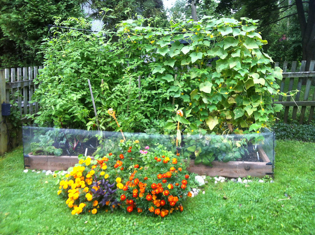 beautiful organic raised bed vegetable garden flickr photo sharing