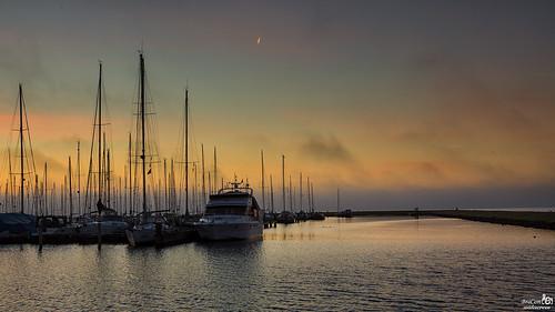 Marina, Sunrise and fog