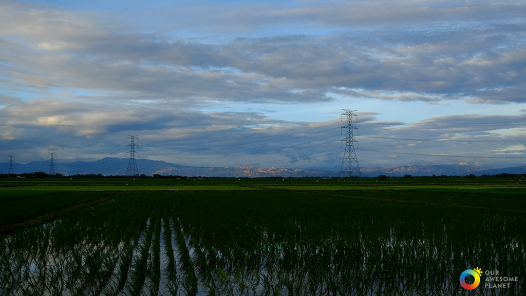 Lakbay norte 6 a road trip to nueva ecija and cagayan valley our going around nueva ecija meant experiencing the farm life as it is known as biggest rice producer of central luzon hence the name rice bowl of the stopboris Image collections