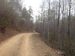 Pine Log Gap Road