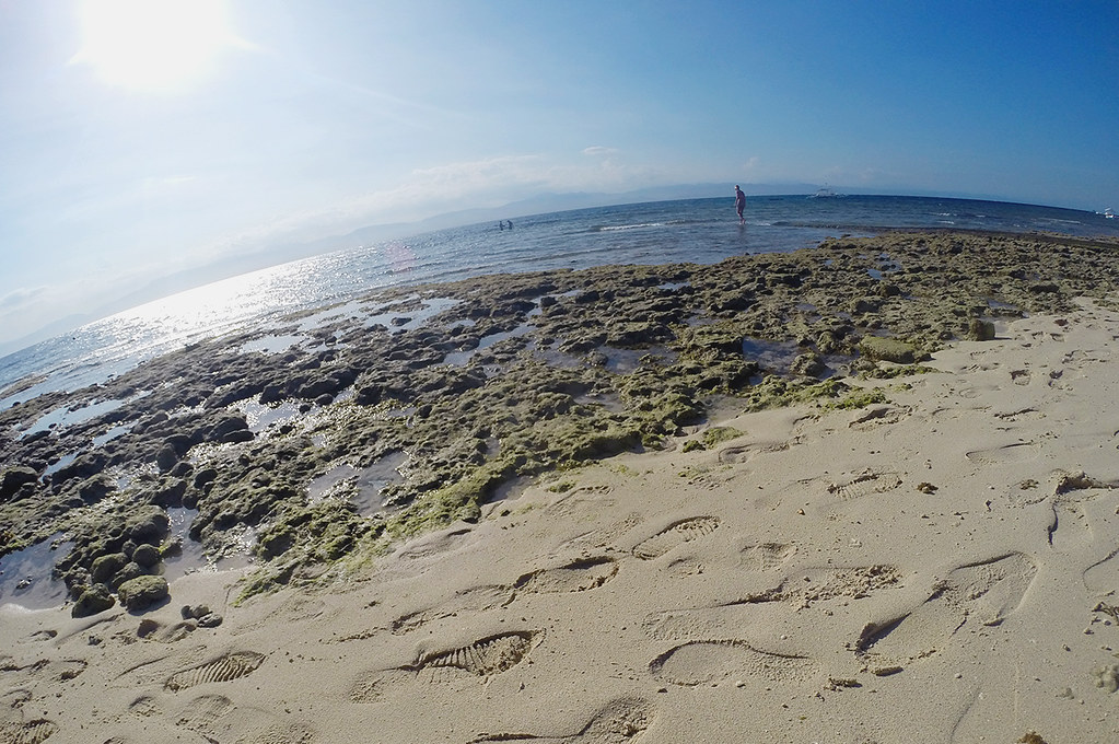 Moalboal Island Hopping (18)