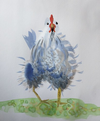 chicken kip aquarel