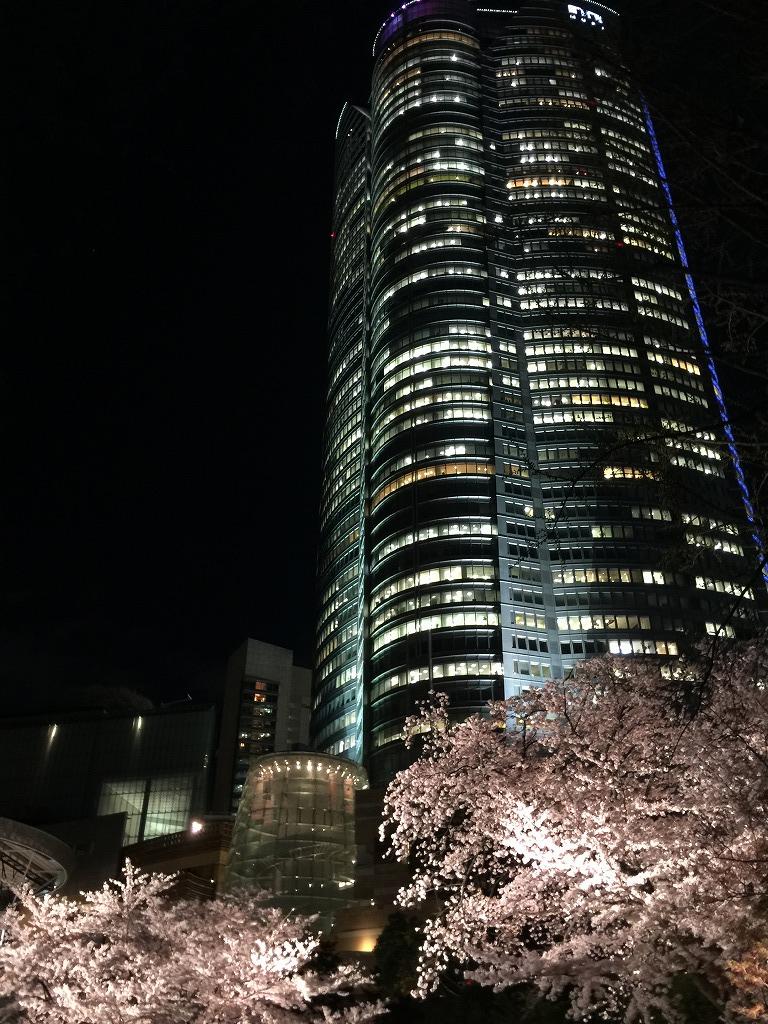 20170407_Tokyo Night Cruising (2)