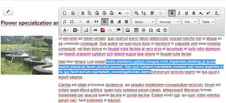 Front-end editing Rubedo | by Rubedo project
