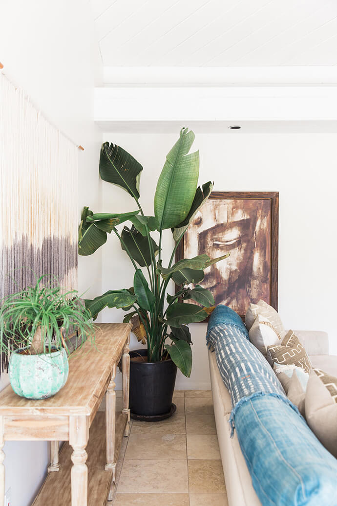 Large Indoor Plant | Boho Living Room Decor