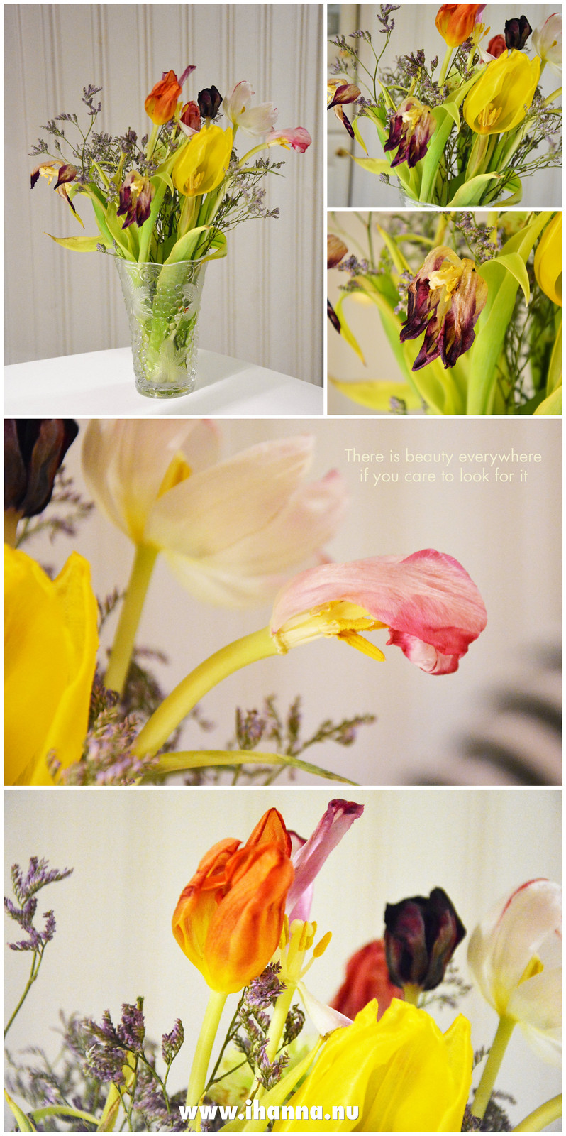I think they are just as beautiful - the wittered tulips by iHanna