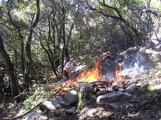 Brûlage et travaux divers sur U Chjassu di I Carbunari