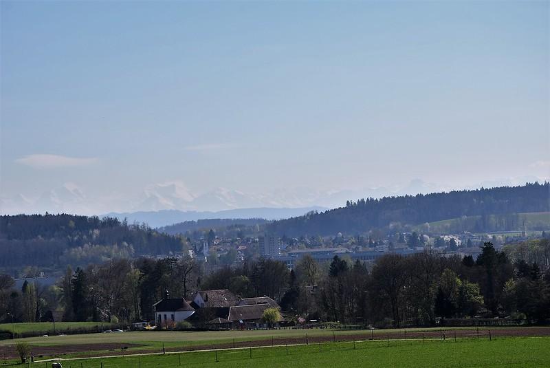 Waldegg 07.04 (15)