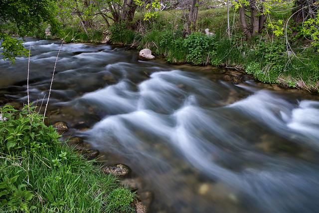 Jones Hole Creek