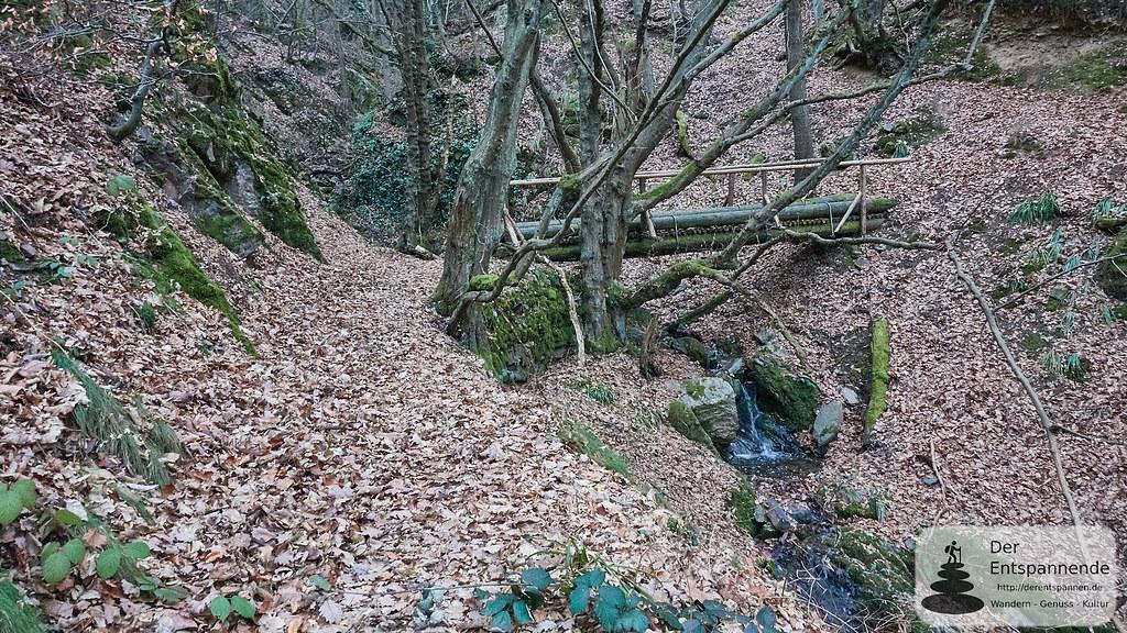 Brücke in der Kreuzbachklamm im Binger Stadtwald