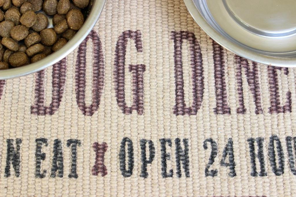DIY: Creative Way To Store Pets Food