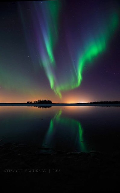 Aurora's Reflections