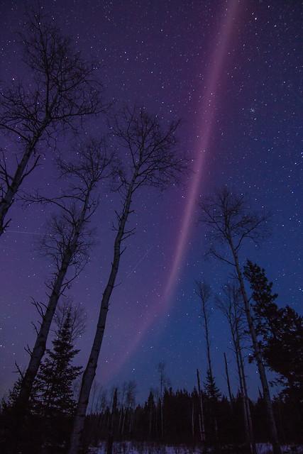 """""""Steve"""" in the night sky"""