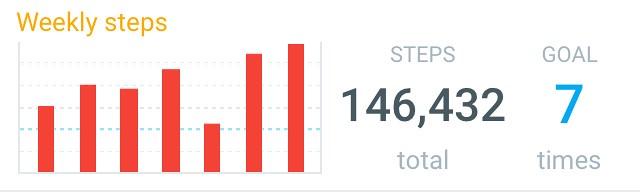 146,432 Steps