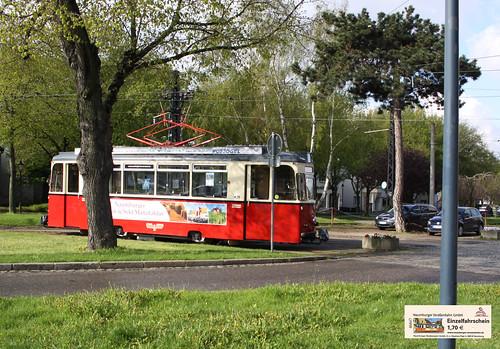 Naumburg 061