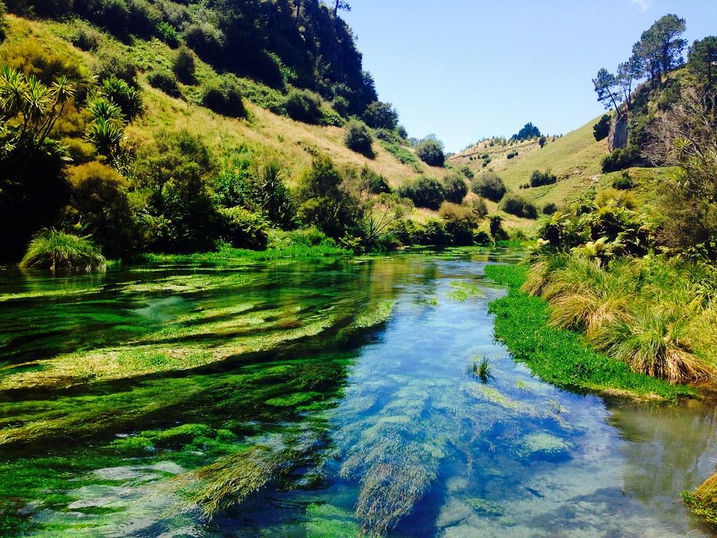 Blue springs new zealand kimberley turner flickr for Landscape jobs nz