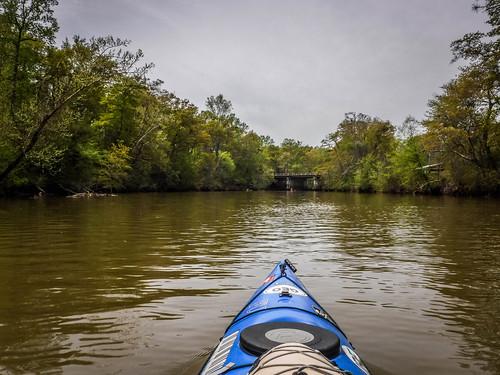 Saluda River at Pelzer-62