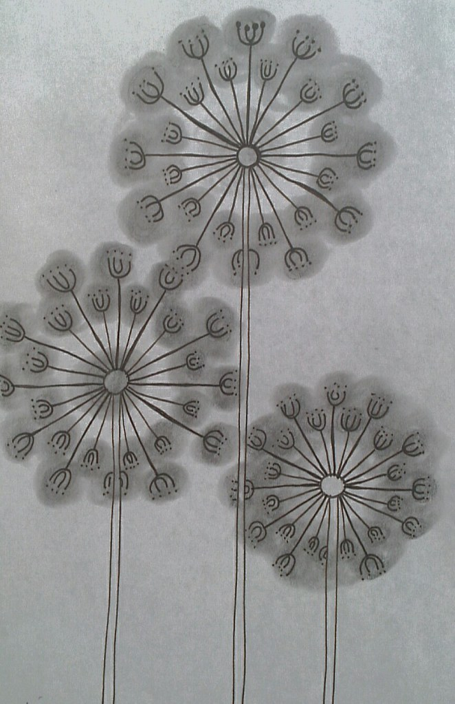 zentangle flowers | Maggie | Flickr