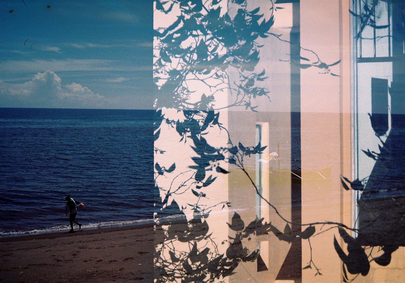 sea+wall
