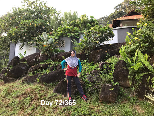 Day 72-365