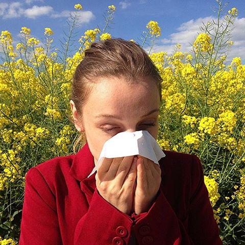 mật ong có tác dụng điều trị viêm mũi viêm xoang