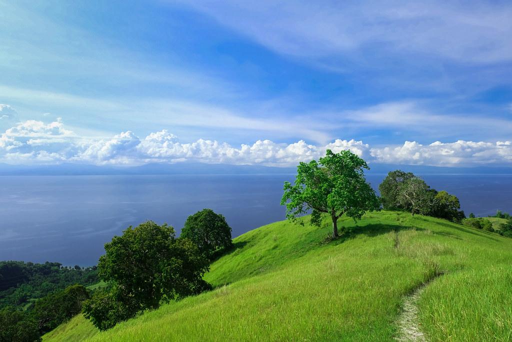 Mt Lanaya, Alegria, Cebu-10