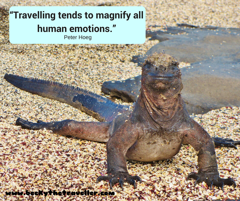 "Travel quotes - Inspirational travel quotes ""Traveling tends to magnify all human emotions."" — Peter Hoeg"
