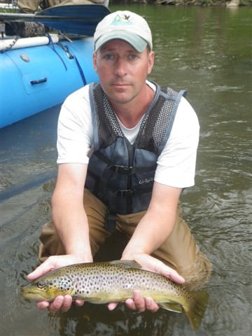 Brown trout courtesy of alan klotz maryland fisheries for Md dnr fishing report