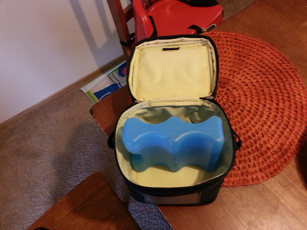 Medela Advanced Pump With One Cooler Bag 80 Li Flickr By Moving2013403