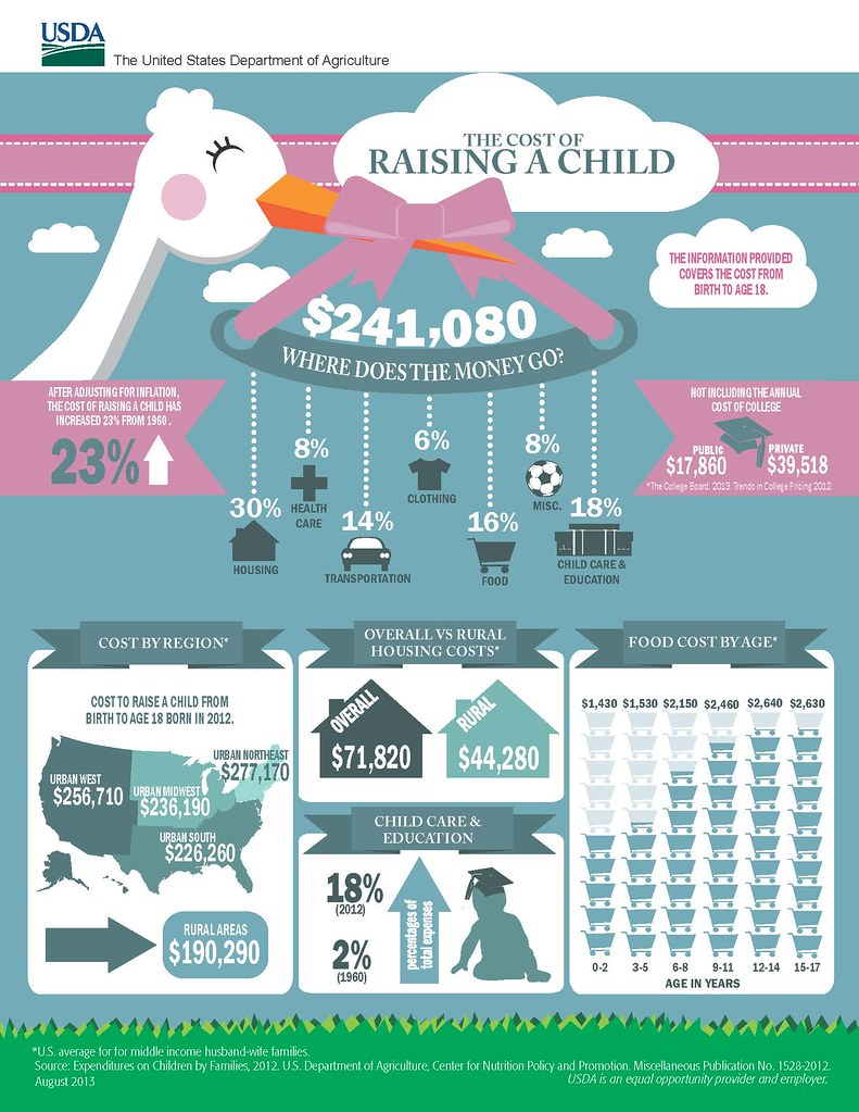 """""""The Cost of Raising a Child"""" Infographic. 