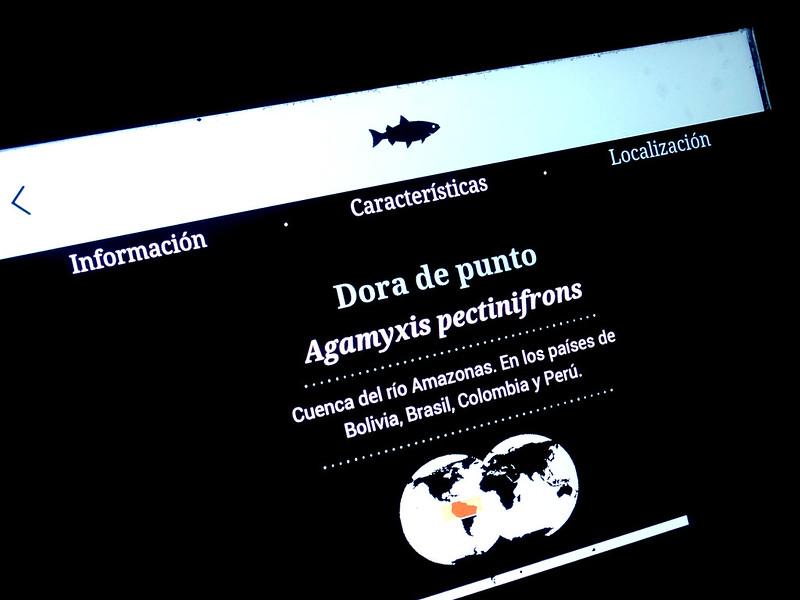 monitor touch screen do aquário do parque explora